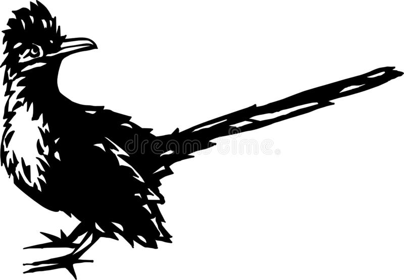 Black and White Road Runner Illustration. Black and white vector illustration of a road runner royalty free illustration