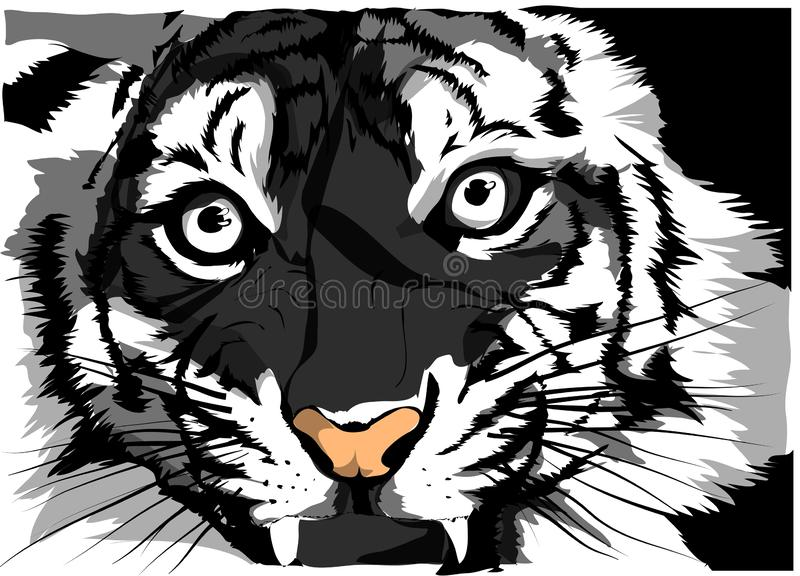 Black and white vector sketch of a tiger s face vector illustration