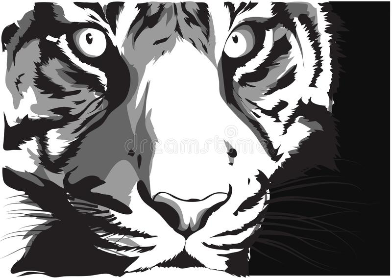 Black and white vector sketch of a tiger s face stock illustration