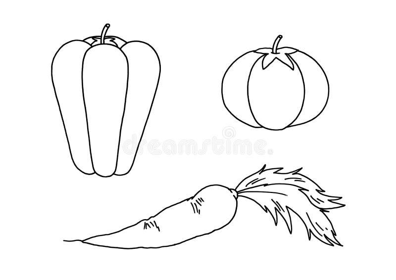 Download Black And White - Vegetable Stock Illustration - Image: 12543640