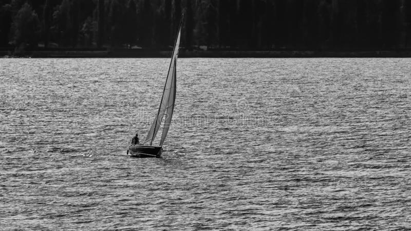 Black and white view of a sailboat sailing on Lake Maggiore in Italy, taking advantage of the wind that ripples the water stock photos