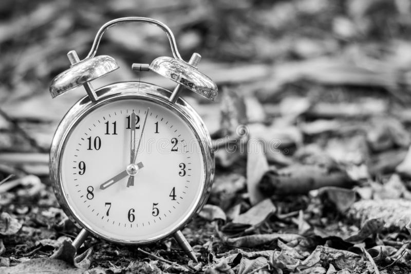 Black and White vintage alarm clock on the ground with nature. Black and White vintage alarm clock on the ground with nature blurred background and copy space stock image