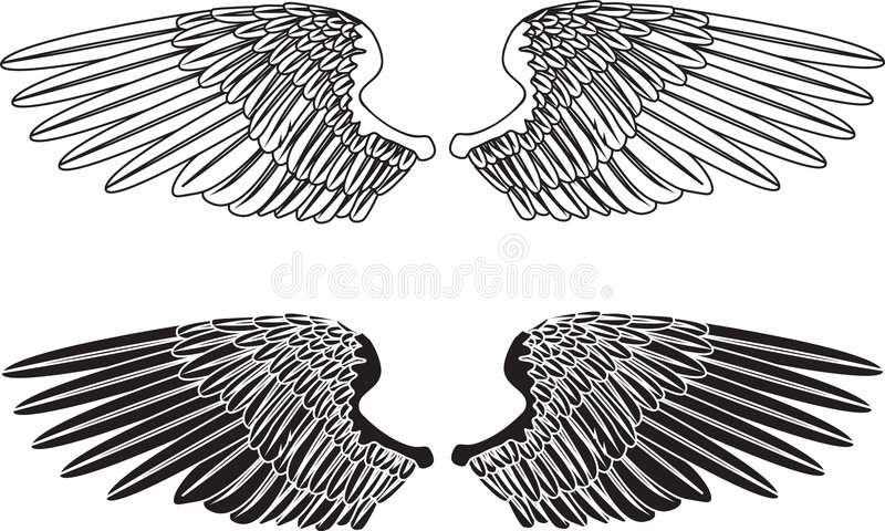 Black and White Wings royalty free illustration