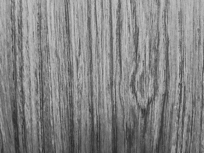 Black and white wood grain texture. Background closeup stock image
