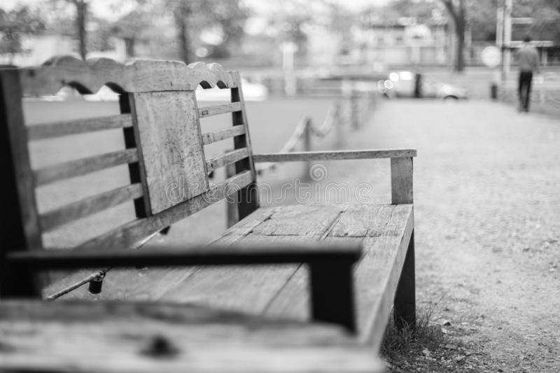 Black and white of Wooden bench on park walkway with sunlight stock photos