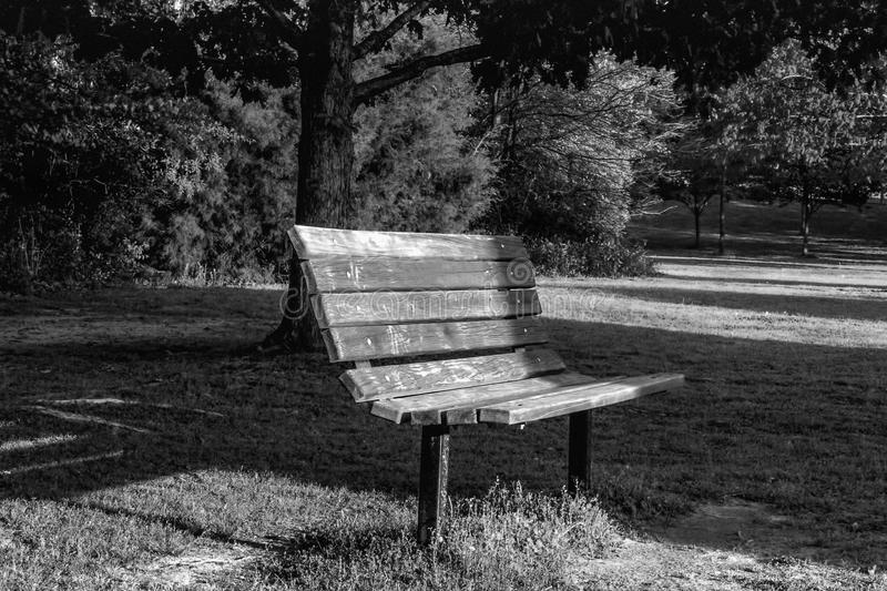 Black and White Park Bench Sunset Trees stock photo