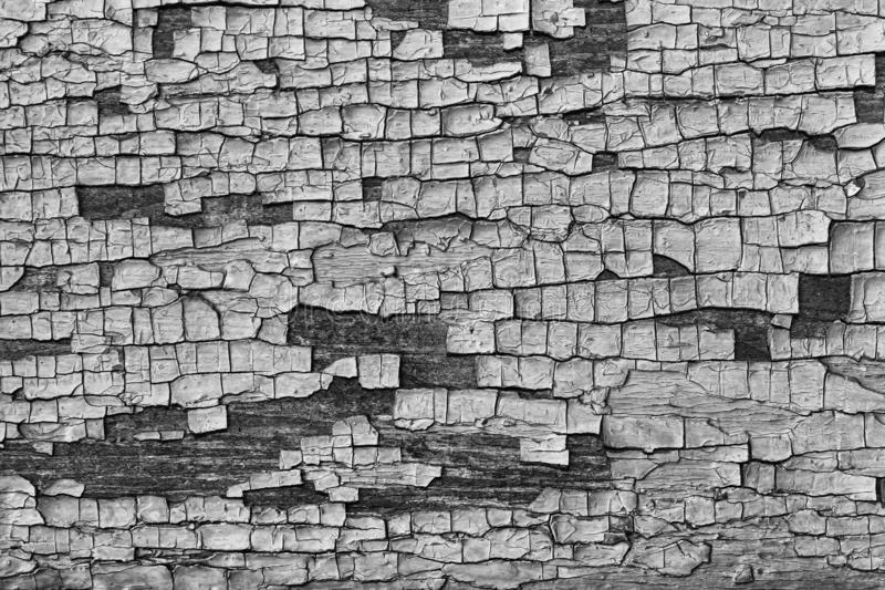 Black and white, Wooden planks background with old brown paint royalty free stock image