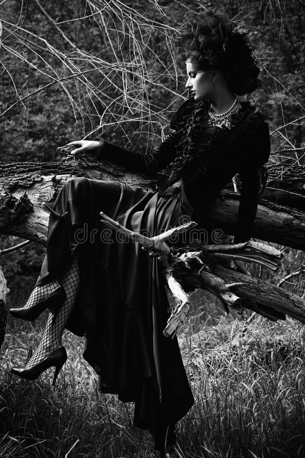 Black widow royalty free stock photography