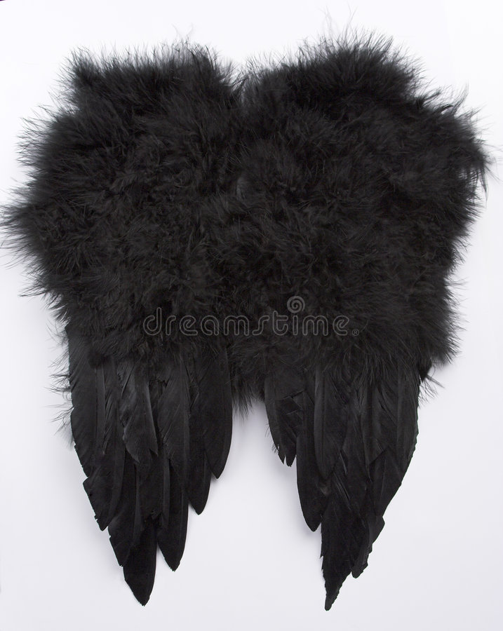 Black wings stock photos