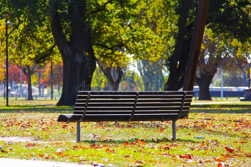 Black Wooden Bench on Green Grass stock photography