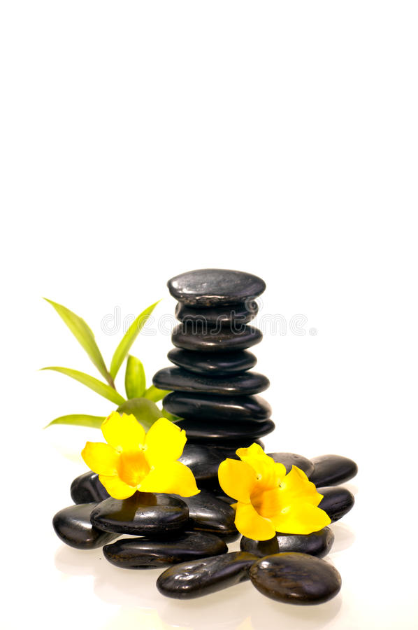 Black zen stones with a bamboo and yellow flowers. Stack of black zen stones with a bamboo plant and yellow flowers stock photos