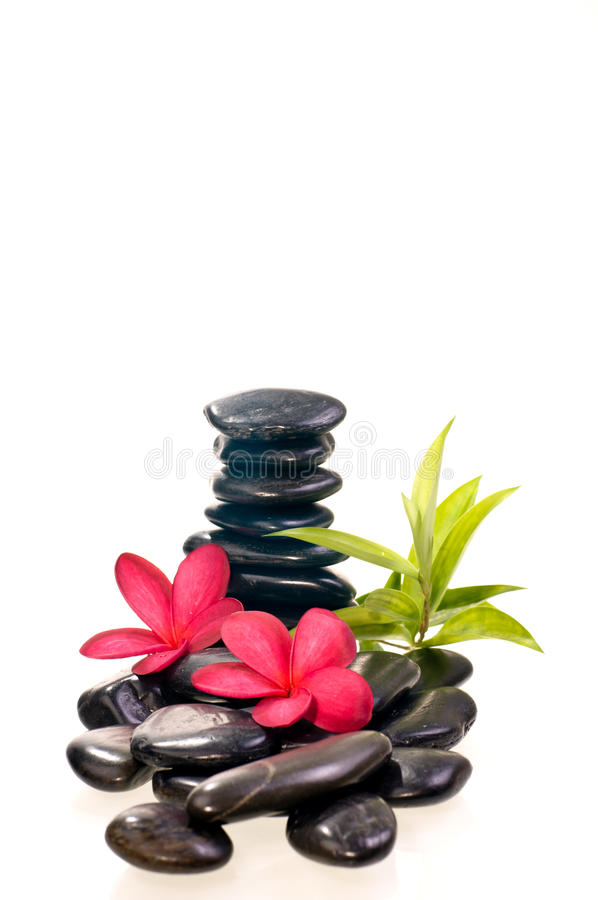 Download Black Zen Stones With Red Frangipani Flowers Stock Image - Image: 26586907