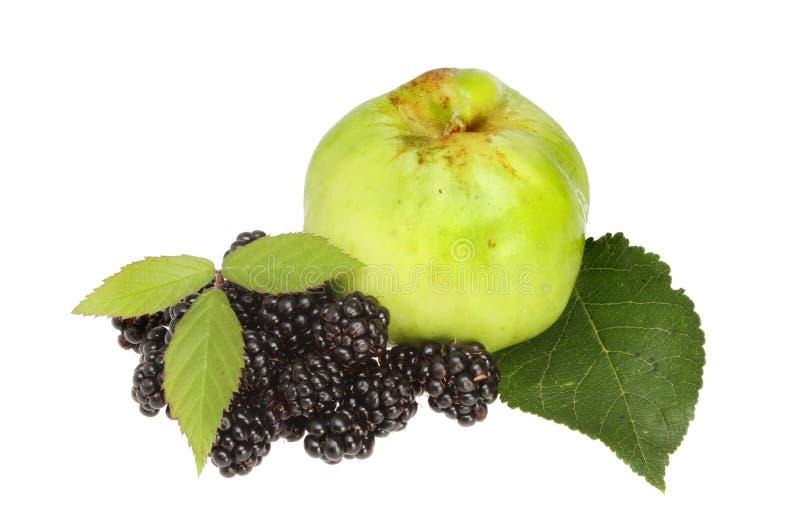 Blackberries and apple stock image