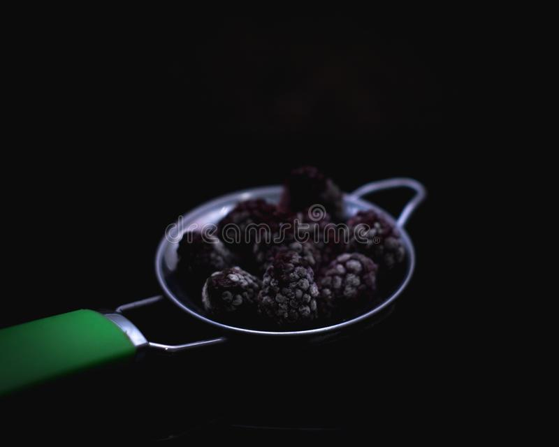 Blackberries with dark mood. Almost a dark food photography this shot is a frozen blackberry it must be a multiple uses stock images