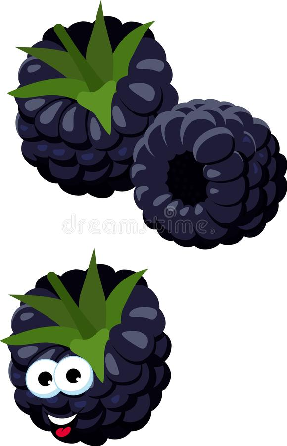 Blackberries. Group of two ripe blackberries with green leaves isolated on white background. Forest berry. Funny cartoon royalty free illustration
