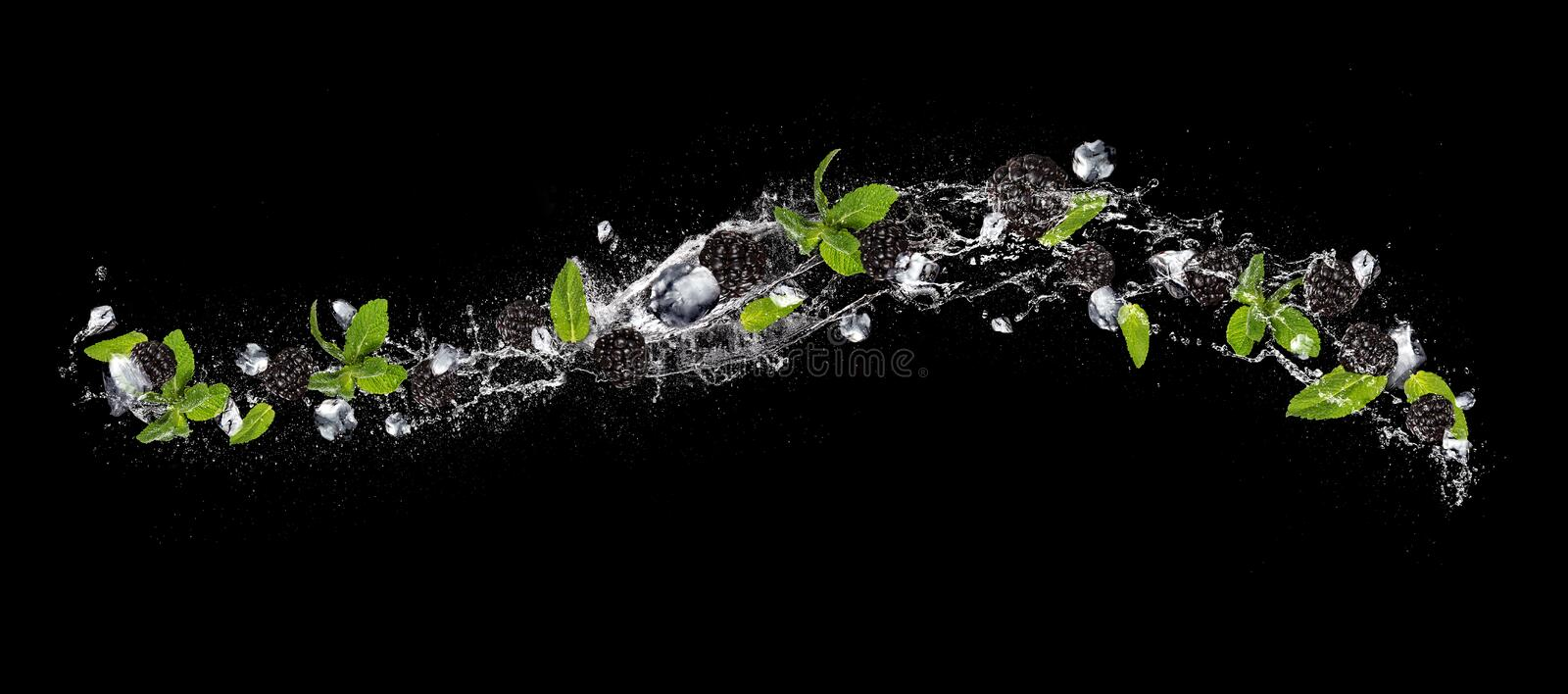 Blackberries and ice cubes falling in water splash on black back stock photos