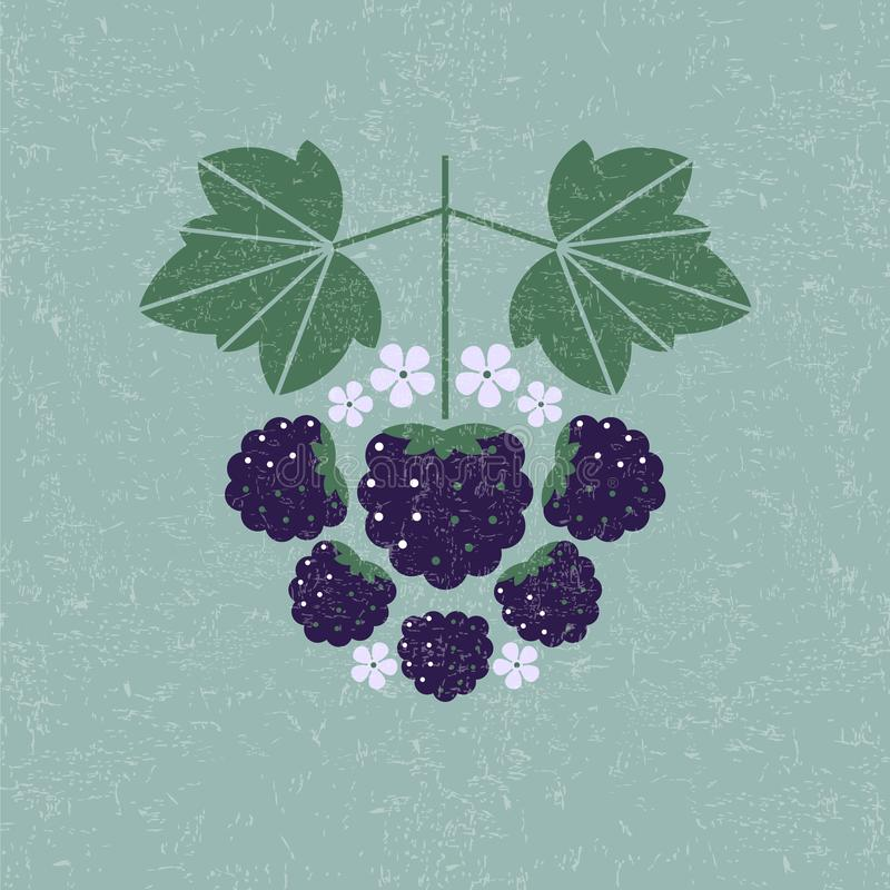 Blackberries illustration. Blackberry with leaves and flowers on shabby background. Flat design. Original simple flat illustration royalty free illustration