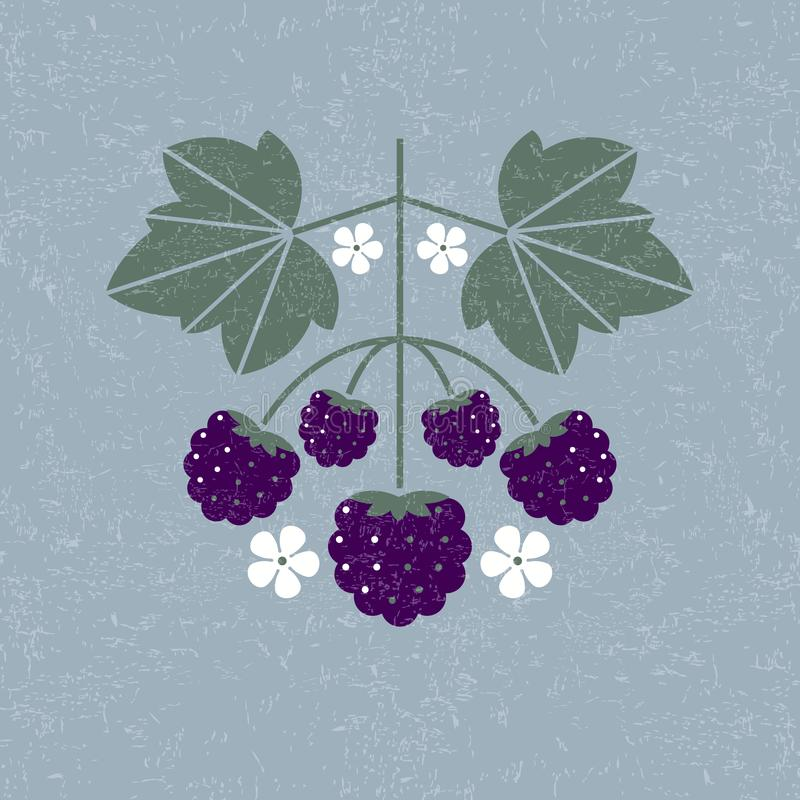 Blackberries illustration. Blackberry with leaves and flowers on shabby background. Flat design. Original simple flat illustration stock illustration
