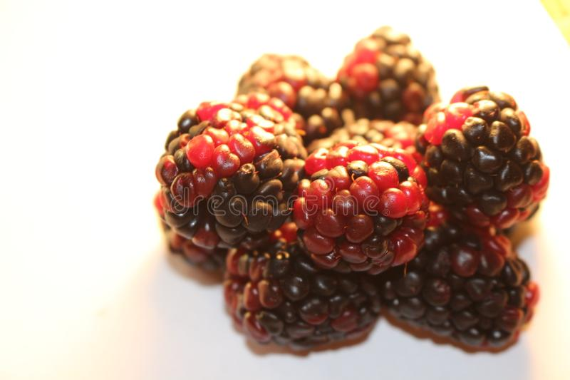 Blackberries isolated that look juicy and ripe. Blackberries are from the Rubus genus in the Rosaceae family stock photography