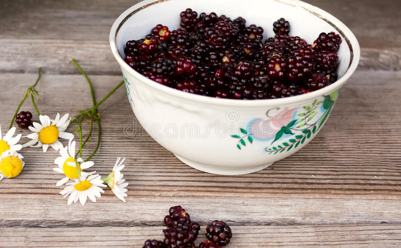 Blackberries lying in plate. It lies next to chamomile royalty free stock photography