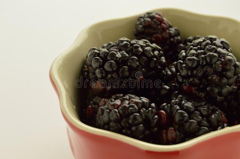 Blackberries in a red ramekin. Studio photo of mini blueberry muffins on a blue plate stock photo