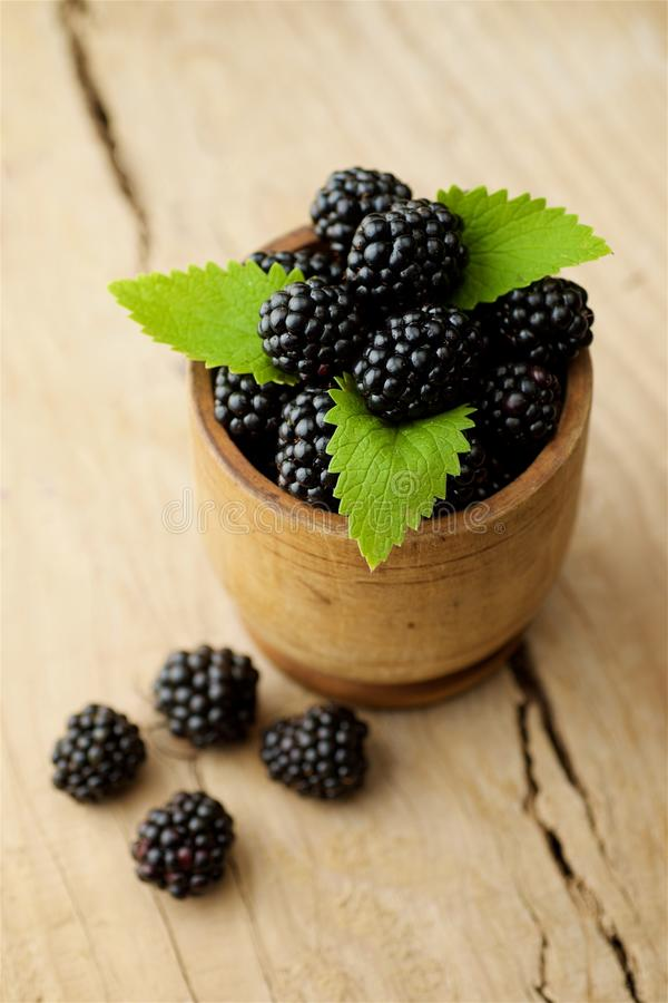 Blackberries on white background royalty free stock images