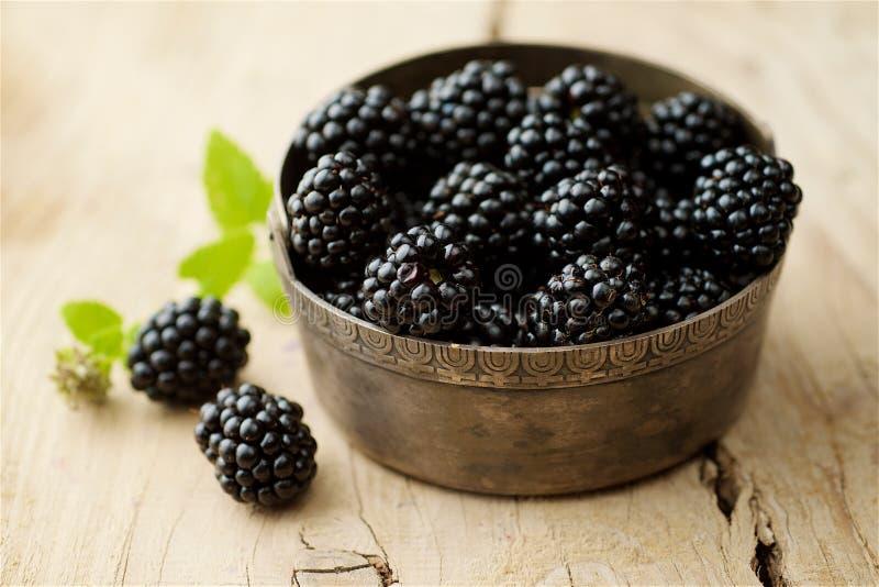 Blackberries on white background royalty free stock image