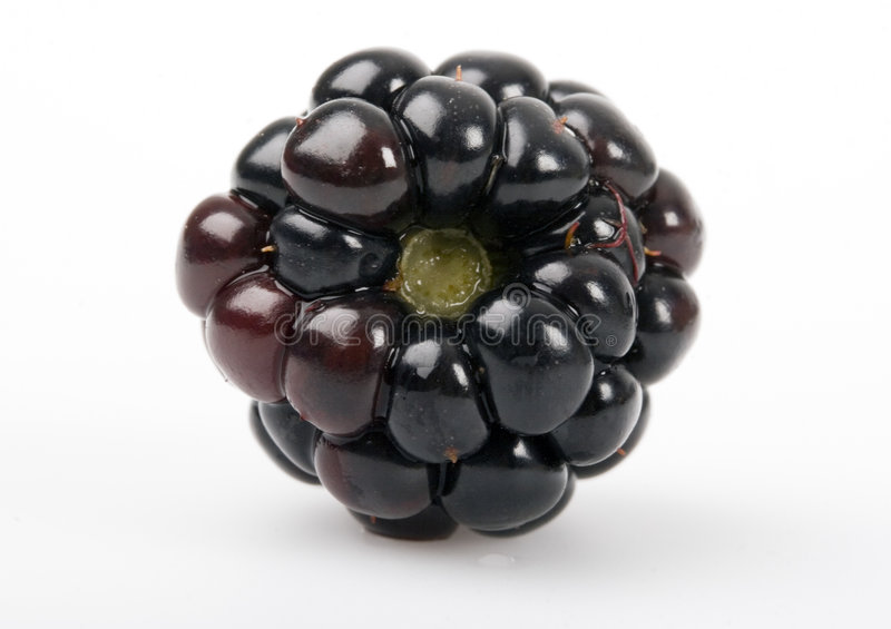 Download The blackberry stock image. Image of food, ingridients - 2180993