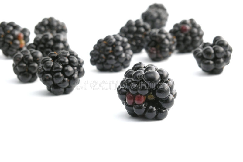 Download Blackberry stock image. Image of fruits, berry, outdoors - 245947