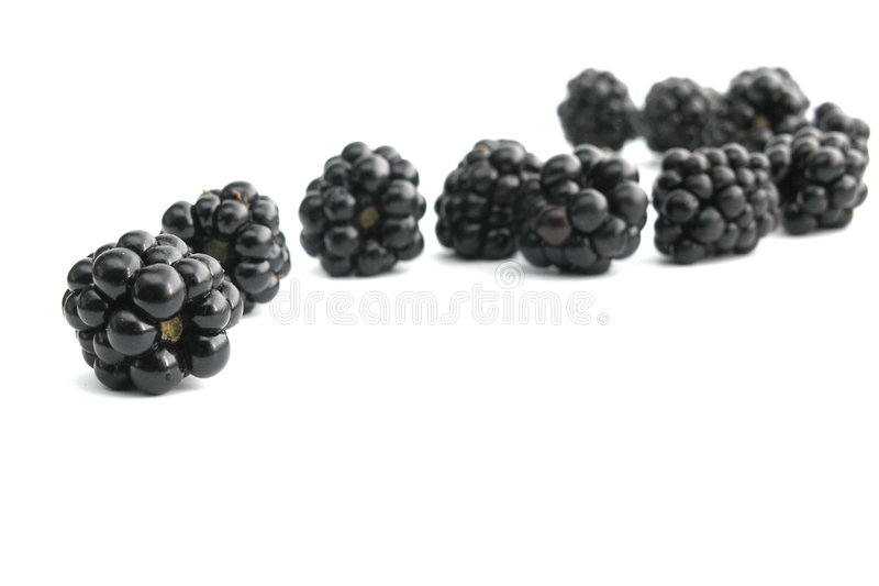 Download Blackberry Royalty Free Stock Photography - Image: 245987