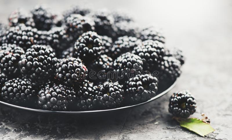 Blackberry close up. Fresh ripe organic blackberries in a bowl closeup on grey. Background royalty free stock photography