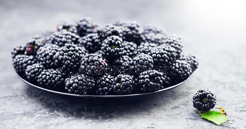 Blackberry close up. Fresh ripe organic blackberries in a bowl closeup on grey. Background royalty free stock images