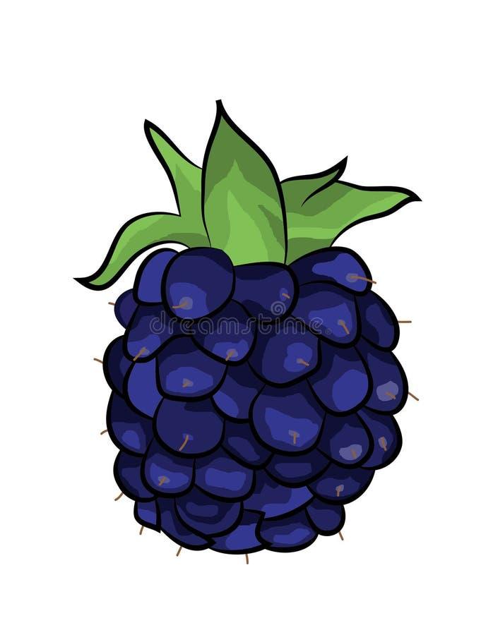 Blackberry-de illustratie van het fruitbeeldverhaal vector illustratie