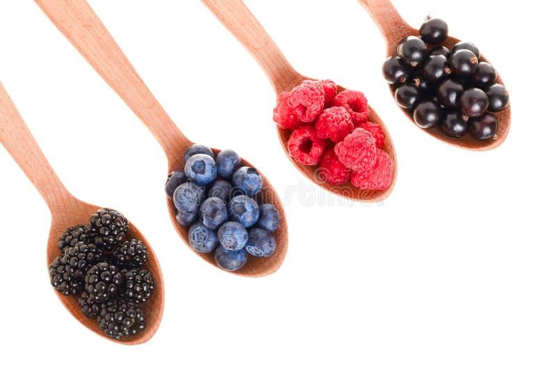 Blackberry-de zwarte bes van de bosbessenframboos in houten die lepel op witte achtergrond met exemplaarruimte wordt geïsoleerd v royalty-vrije stock foto's