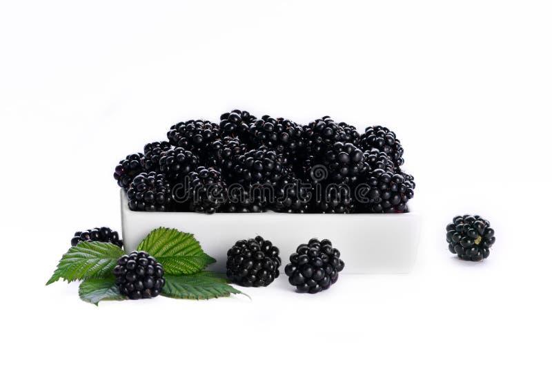 Blackberry in een witte schotel - witte achtergrond stock afbeeldingen