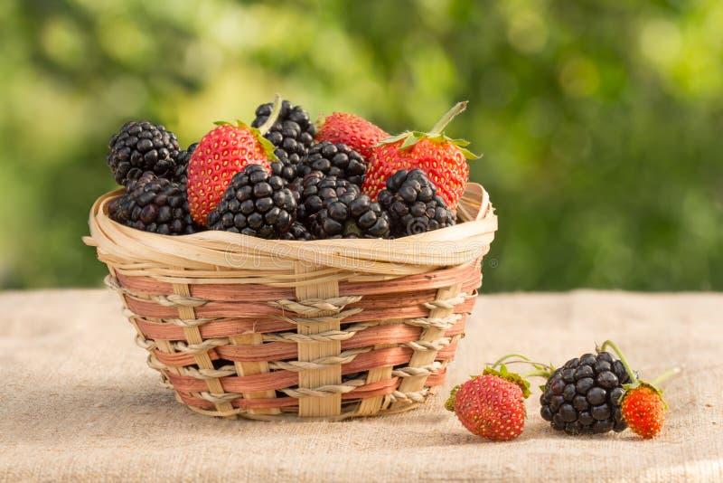 Blackberry en aardbei in rieten mand op een achtergrond van gebladerte stock afbeelding