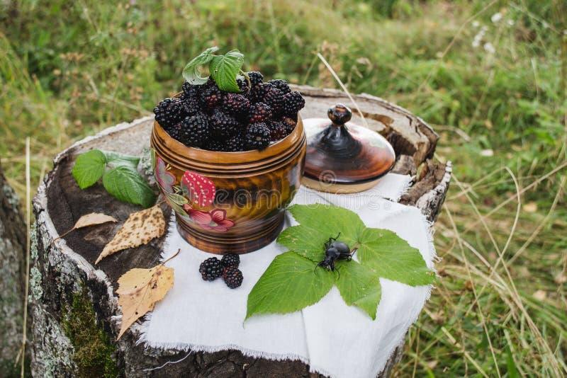 Blackberry en el ataúd imágenes de archivo libres de regalías