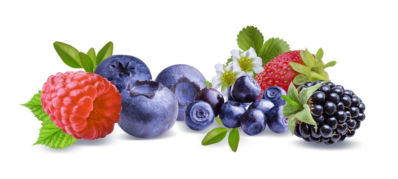Blackberry, fraise, framboise, myrtille et feuilles d'isolement images stock