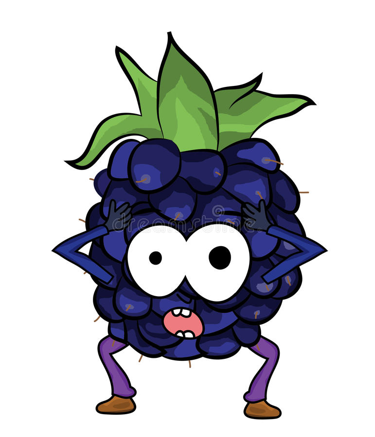 blackberry fruit cartoon illustration stock illustration