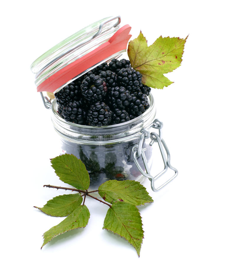 Download Blackberry jam stock image. Image of autumn, glass, leaf - 25230173