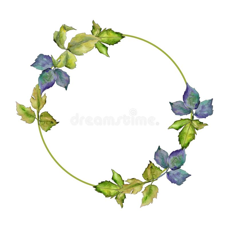 Blackberry leaves wreath in a watercolor style. stock illustration