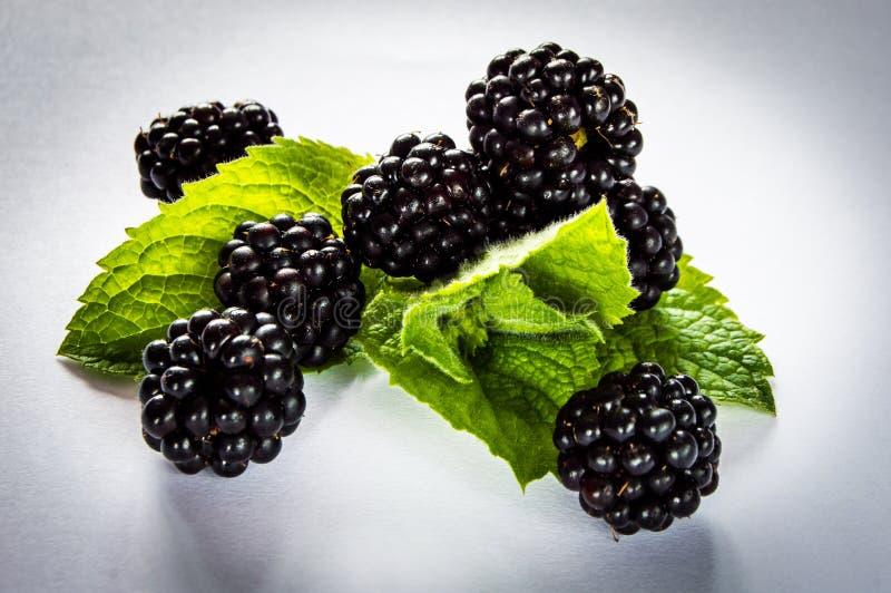 Blackberry 8 & mennica zdjęcia stock