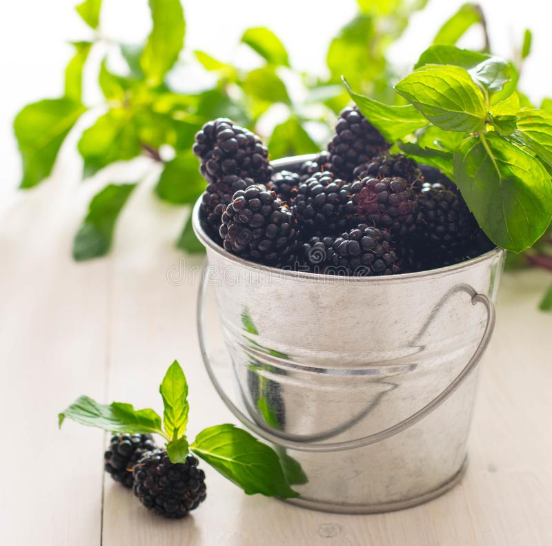 Blackberry mint sunshine berry bowl wood background macro spring fresh close up rustic village. Summer royalty free stock photography