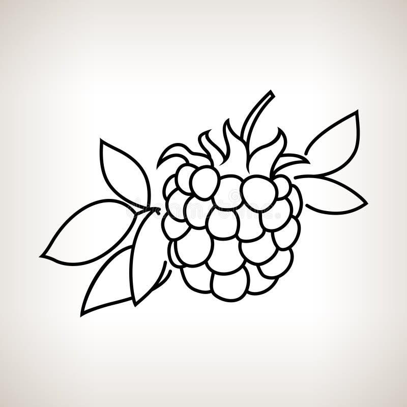Blackberry nos contornos ilustração do vetor