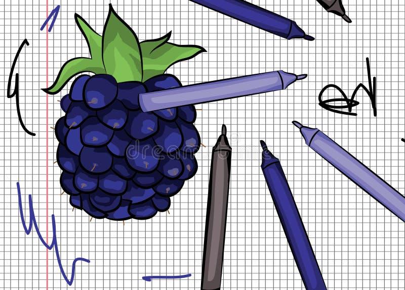 Blackberry op papper wordt getrokken die stock illustratie