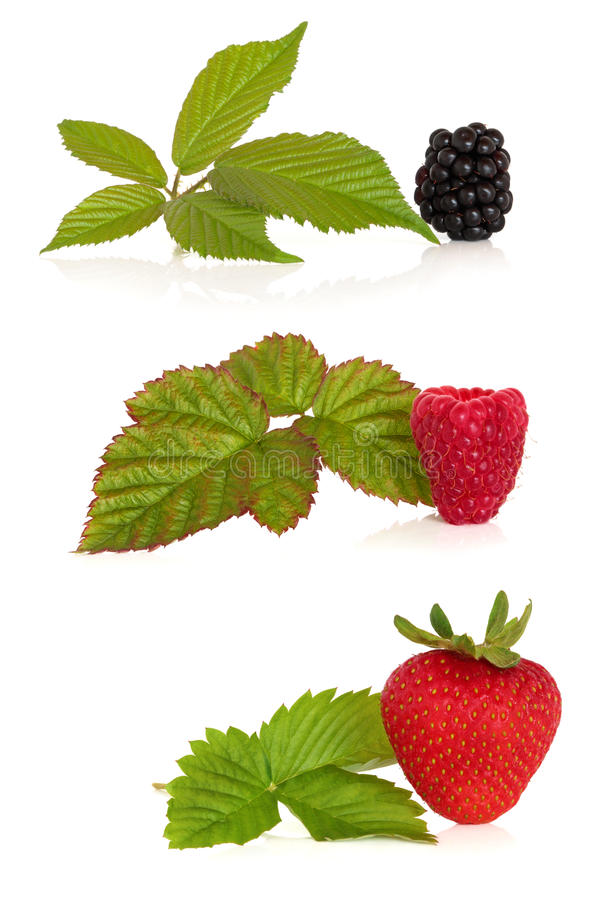 Blackberry, Rasberry and Strawberry royalty free stock images