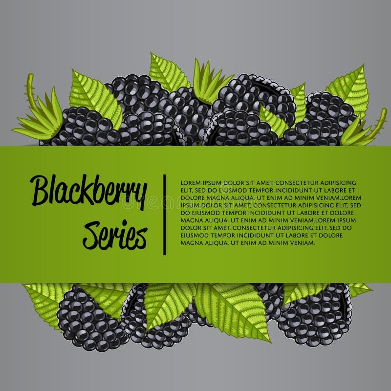 Blackberry-reeksbanner met sappige bes stock illustratie