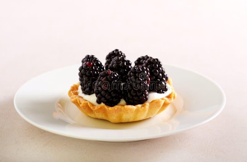 Blackberry-Sahneminitörtchen lizenzfreie stockfotos