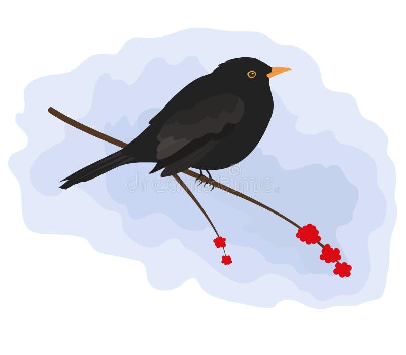 Blackbird stock illustrationer