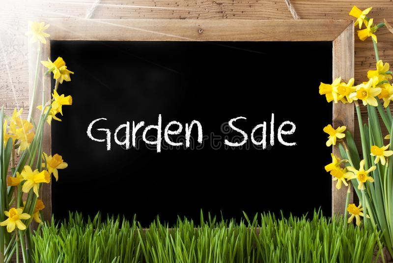 Sunny Narcissus, Text Garden Sale stock photography
